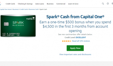 Capital One Spark Credit Card Logo
